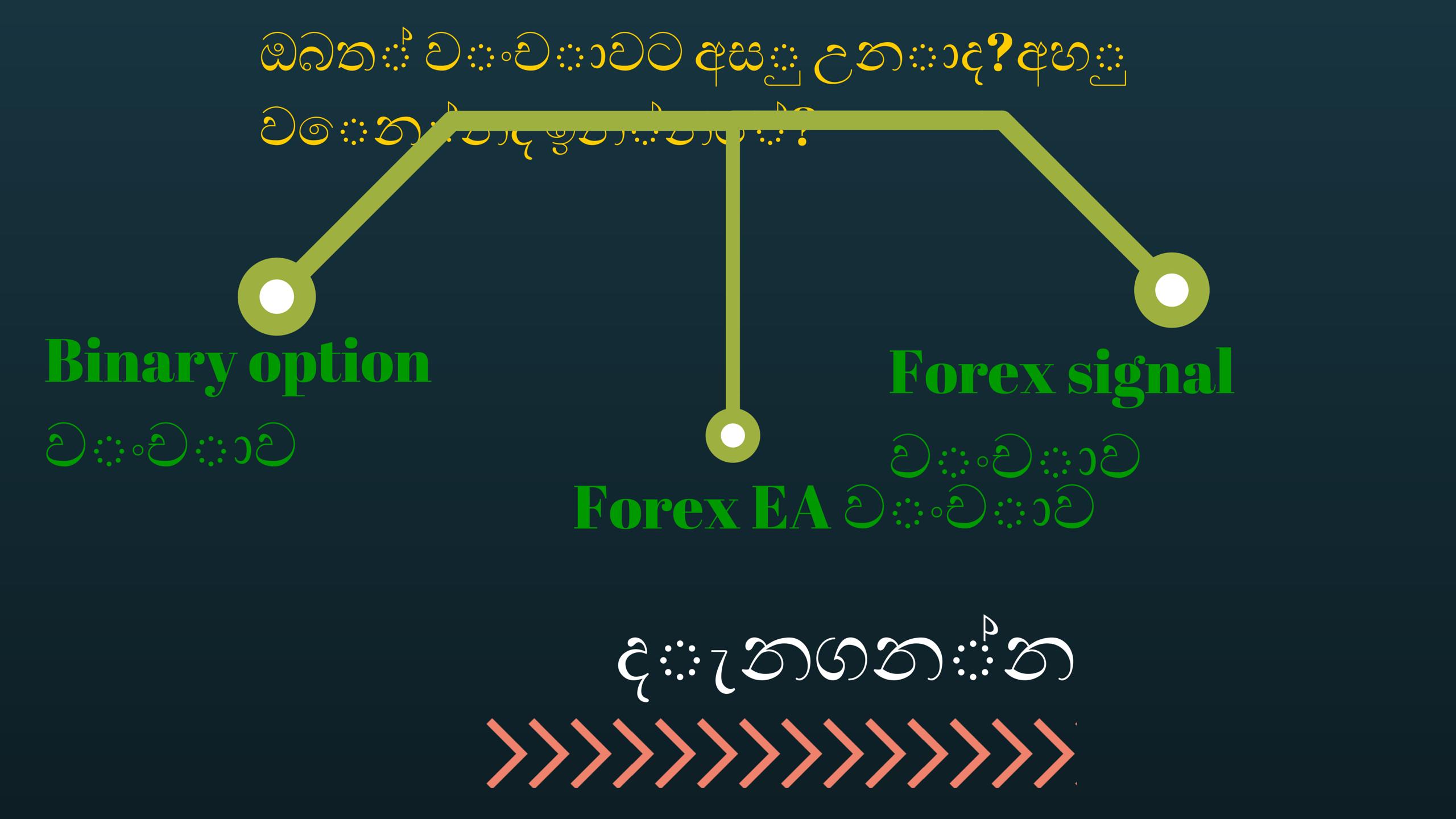 Binary options in dpifoto.id