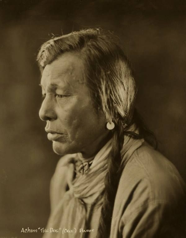 Achim (aka The Dog) from the Piapot Reserve in Saskatchewan - Cree - 1919