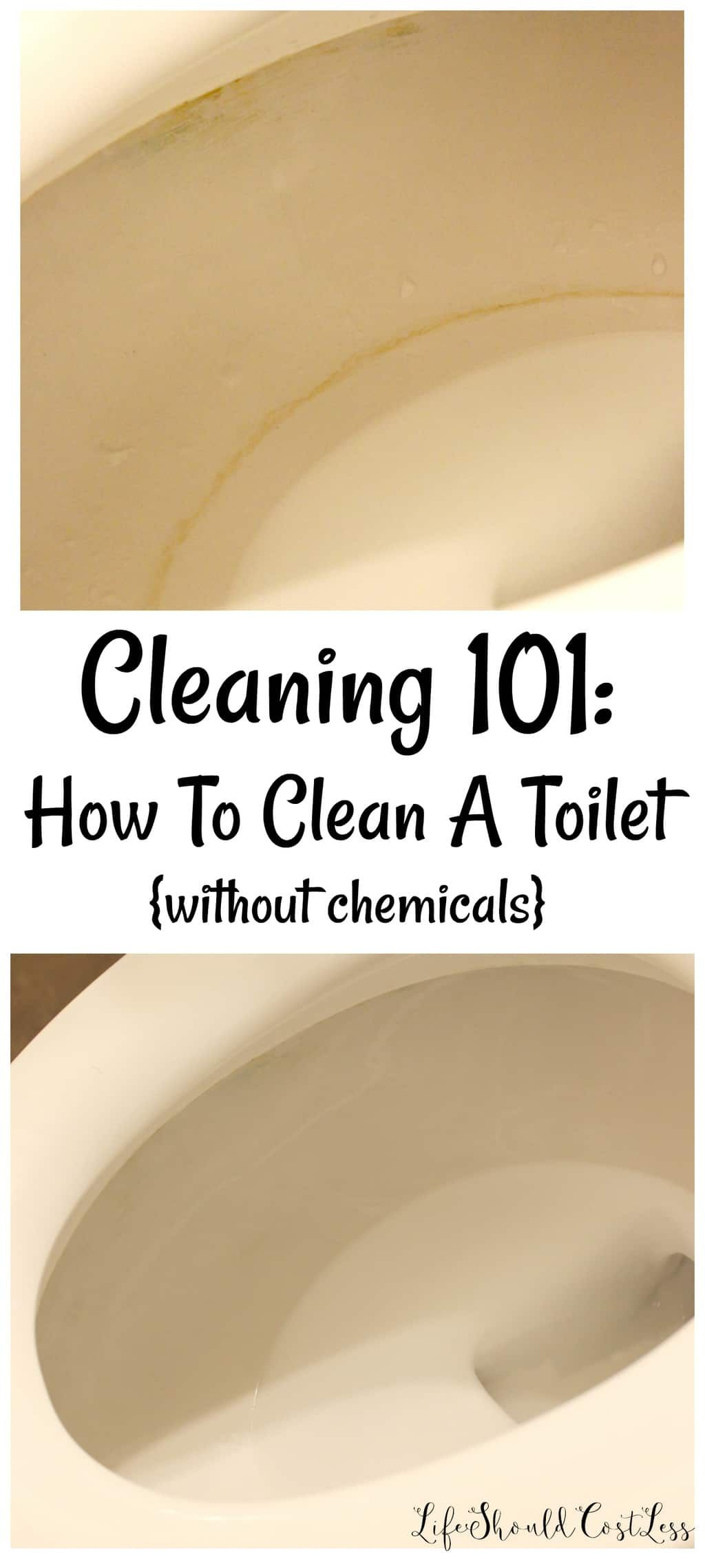 Cleaning How To Clean A Toilet without chemicals Life