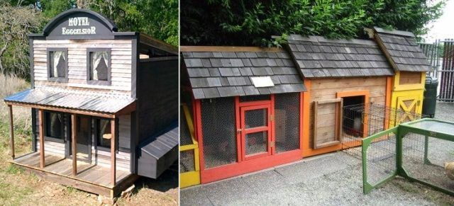 diy fairytale cottage chicken coop | hgtv decor | clothes