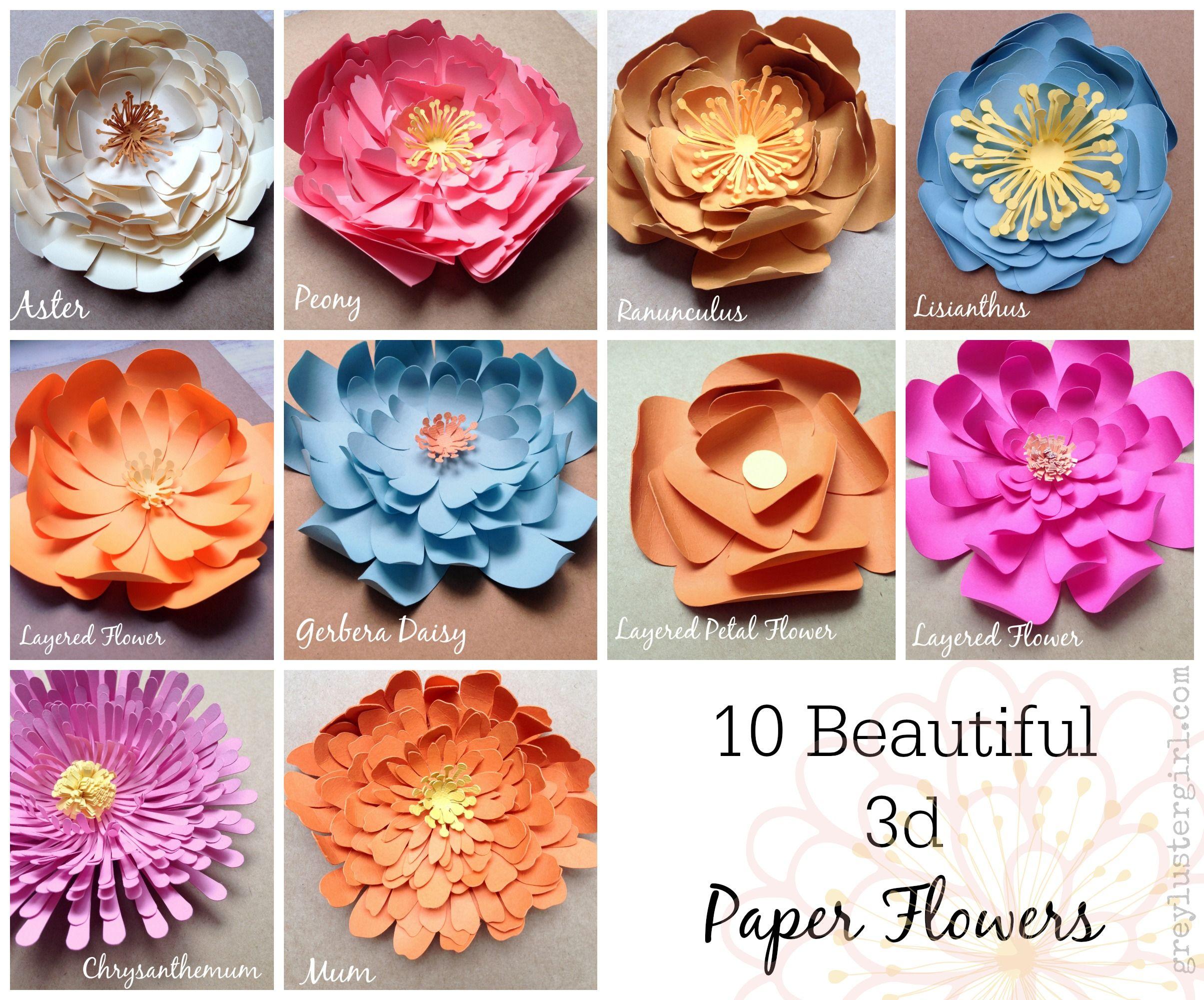 10 Beautiful 3d Paper Flowers Crafts Pinterest Paper Flowers