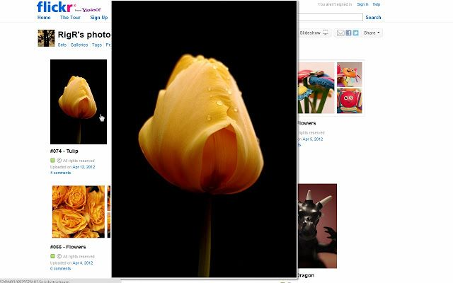 Browse images galleries with ease move the mouse cursor