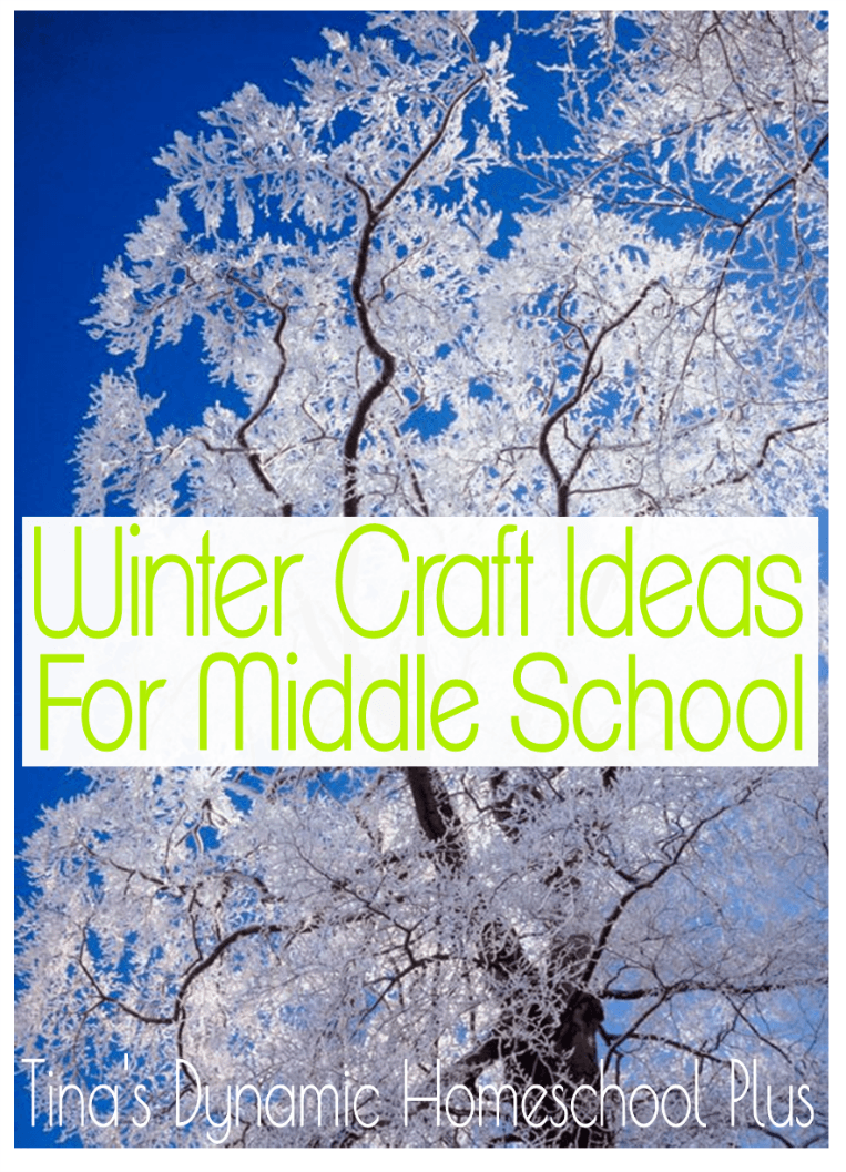 winter craft ideas for middle school winter projects to make and do middle school activities. Black Bedroom Furniture Sets. Home Design Ideas