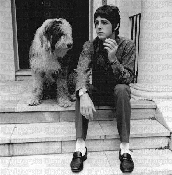 paul mcartney and martha his sheepdog...