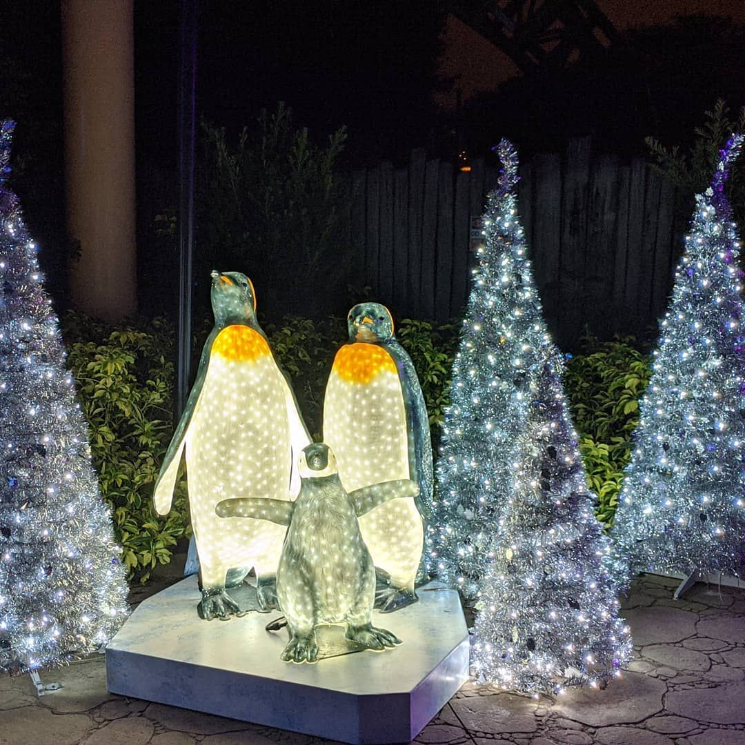 The first night of Christmas Town at Busch Gardens Tampa