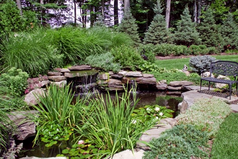 Landscaping around a small pond backyard koi pond and for Small koi pond