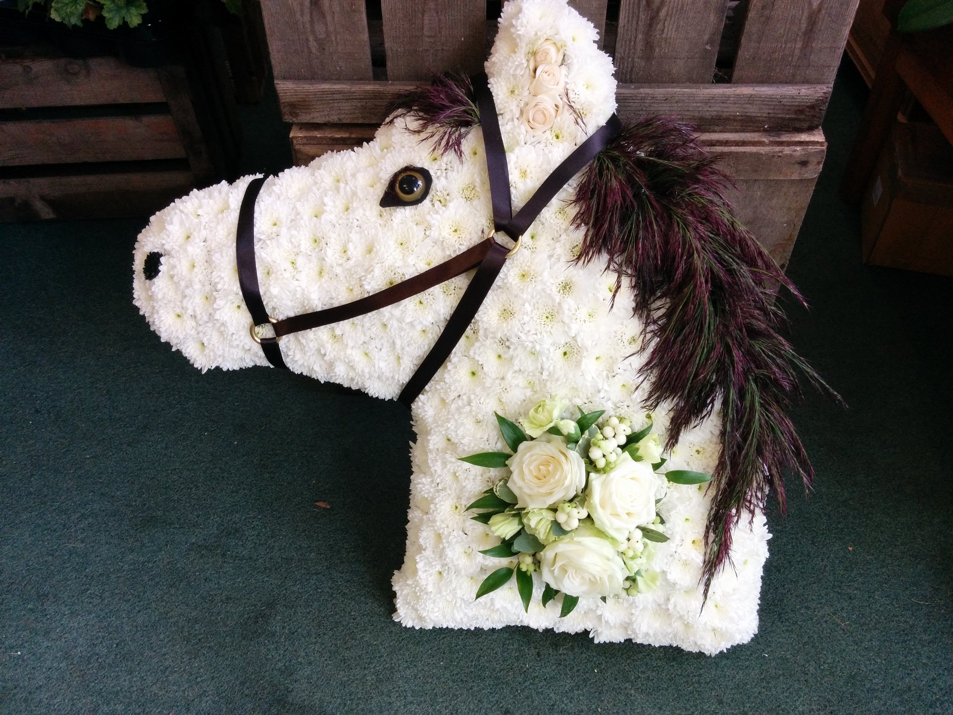 Our White Horse With His Dark Brown Mane Is A Wonderful Tribute For