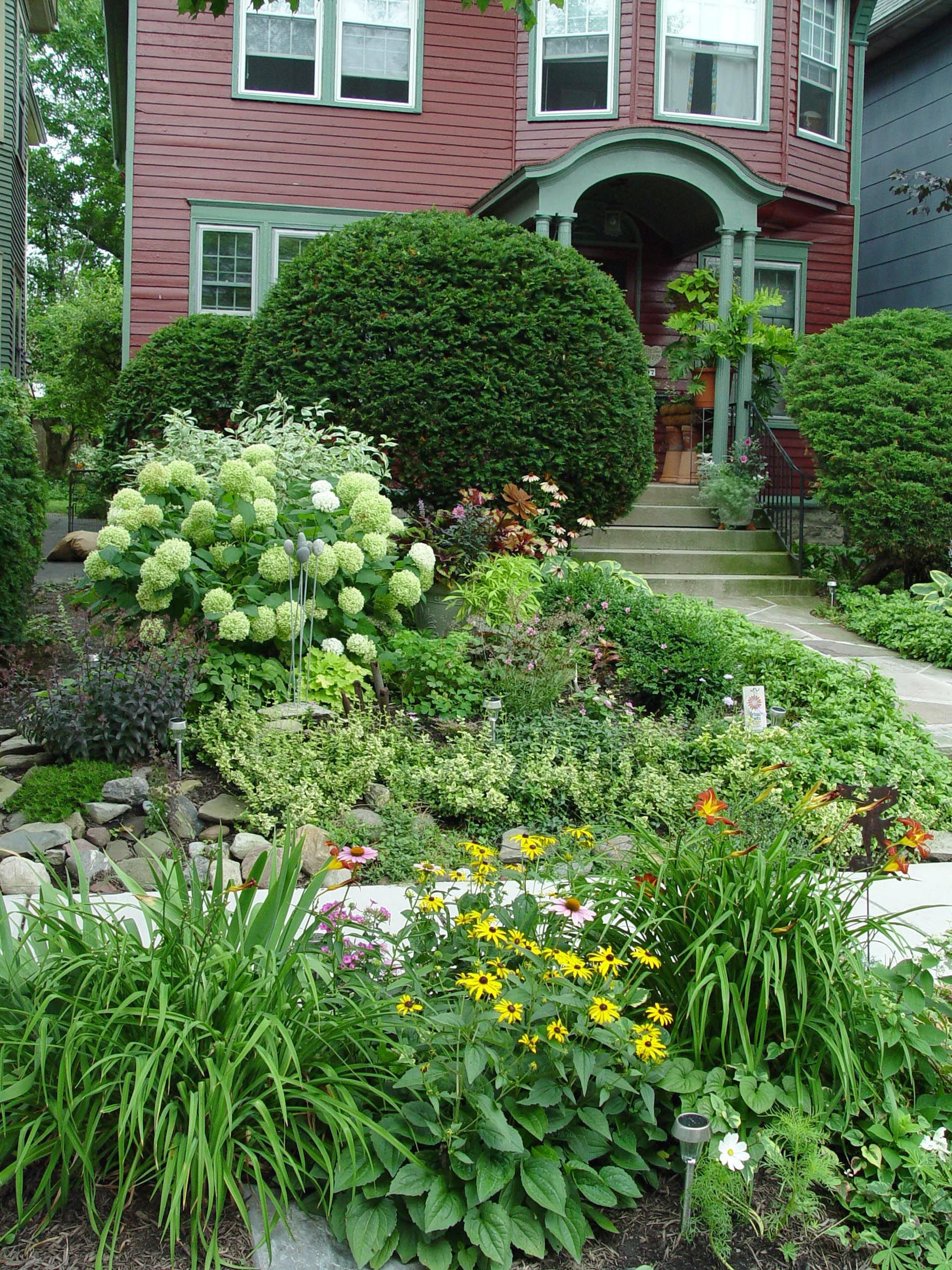 Image detail for -Phoebe McKay's Putnam Street front yard ... on No Lawn Garden Ideas  id=38612