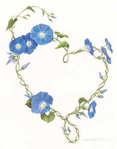Heart In Hand Flower Vine Tattoos Morning Glory Tattoo Flower Drawing