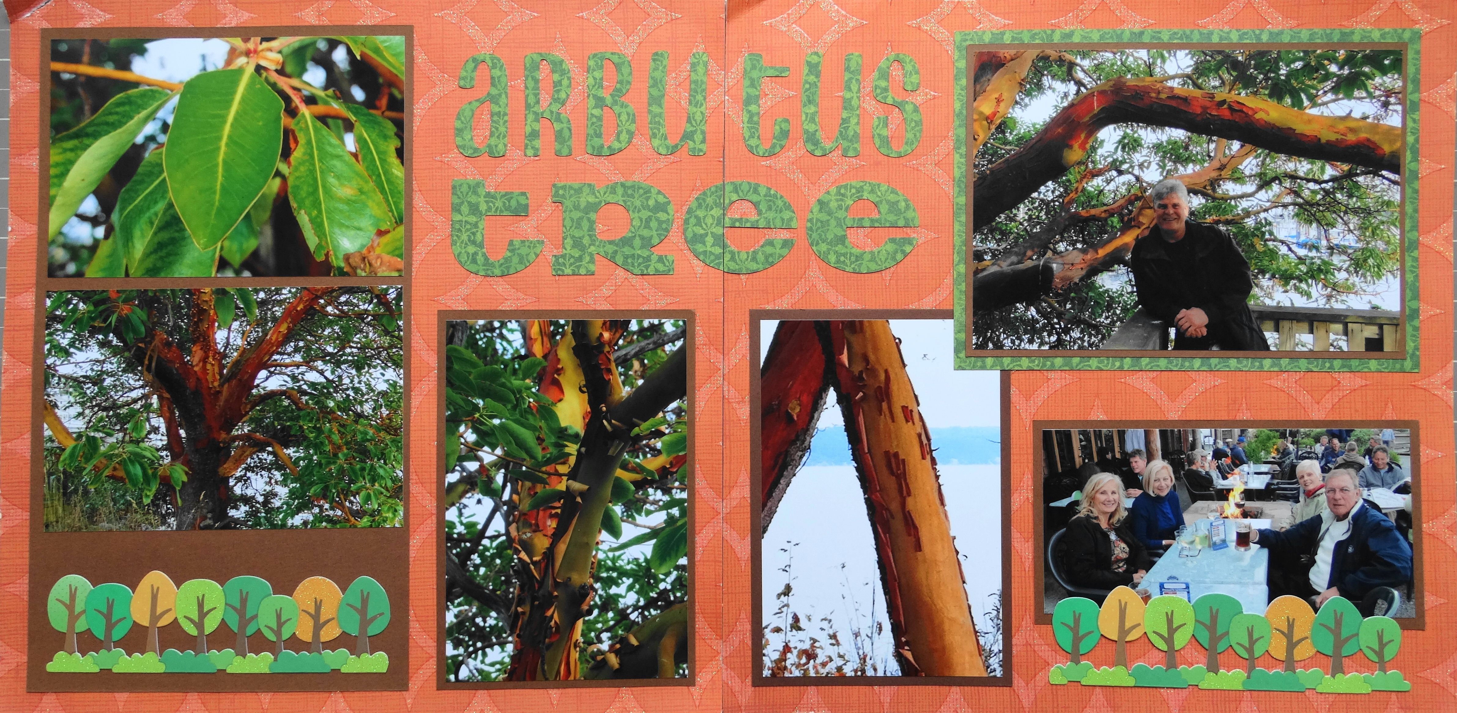 How to scrapbook a road trip - Oregon Travel Scrapbook Page Arbutus Trees 2 Page Road Trip Layout From Travel Album
