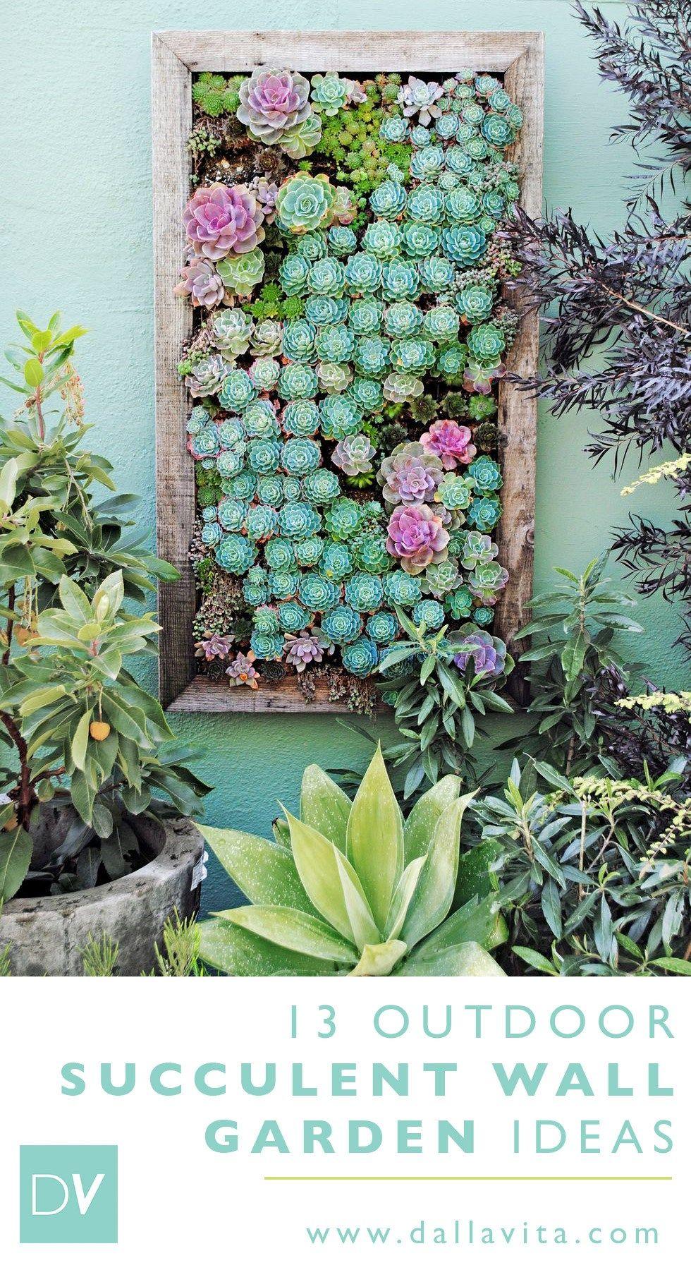 13 Outdoor Succulent Wall Garden Ideas In 2020 Vertical Garden