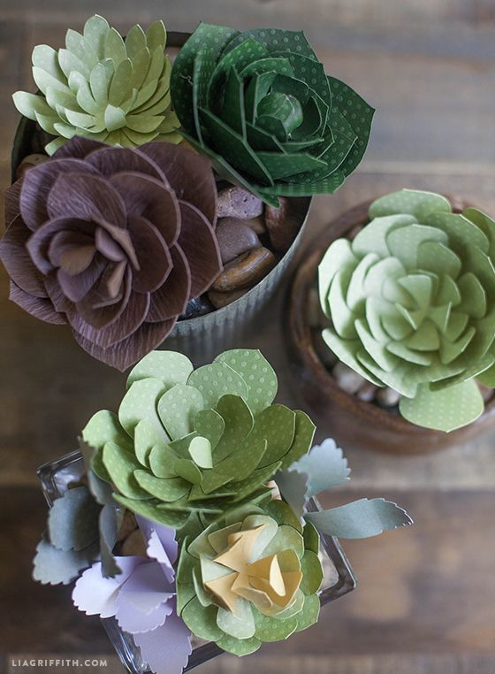 Patterns And Tutorial For Simple Paper Succulents Paper