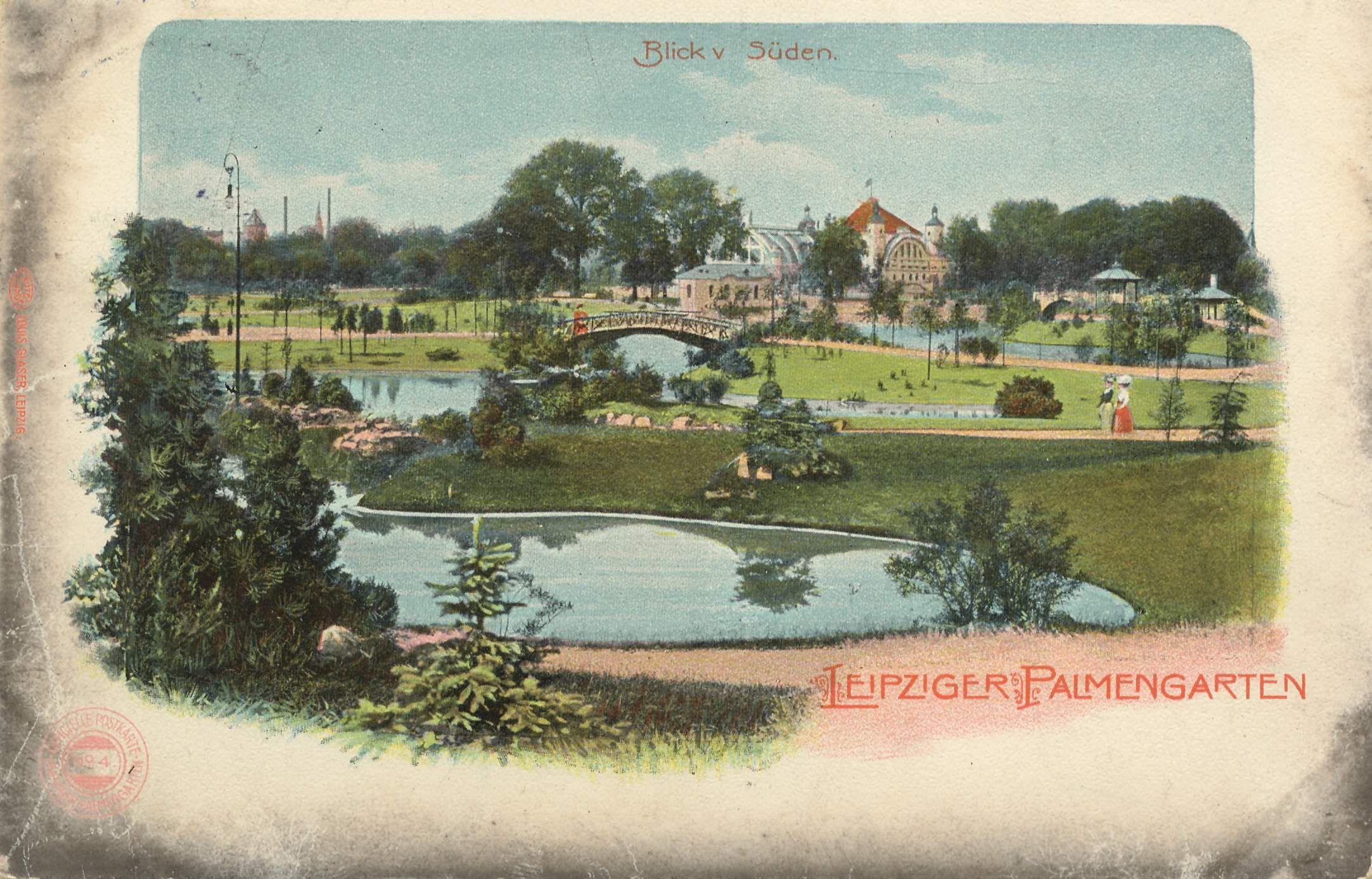 Palmengarten (mit Bildern) Leipzig, Palmengarten, Palmen