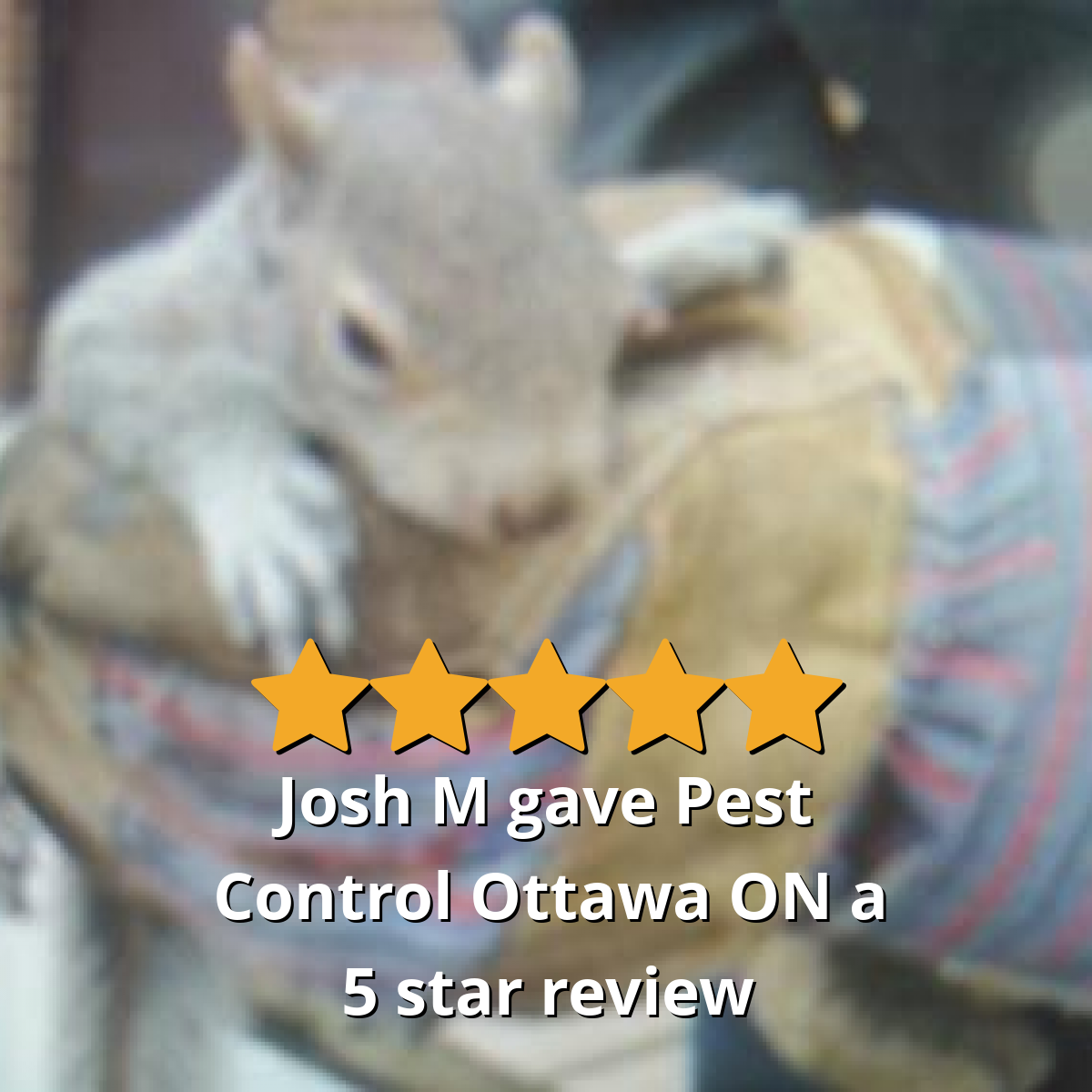 Josh M gave Pest Control Ottawa ON 5 out of 5 stars Pest
