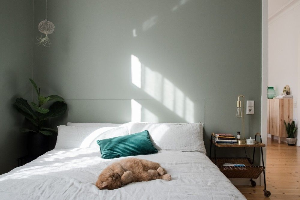Das Ist Die Perfekte Wandfarbe Fur Das Schlafzimmer Gewinnspiel