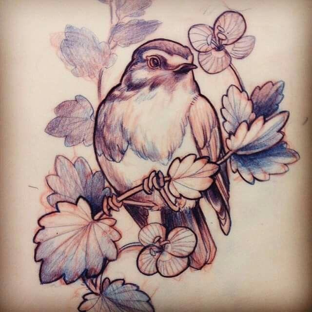 Bird Tattoo Sketch Robin Bird Tattoos Tattoo Design Drawings Birds Tattoo