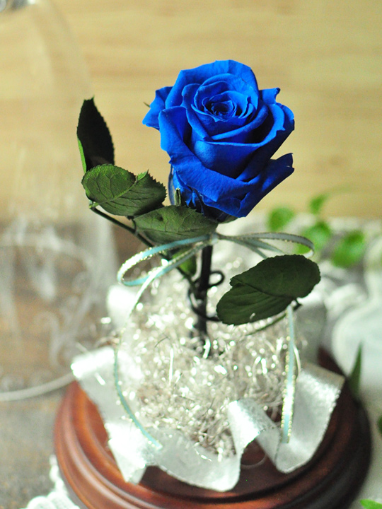 forever in love(ブルー) /一輪バラのガラスドーム【送料無料】 | 青い ...