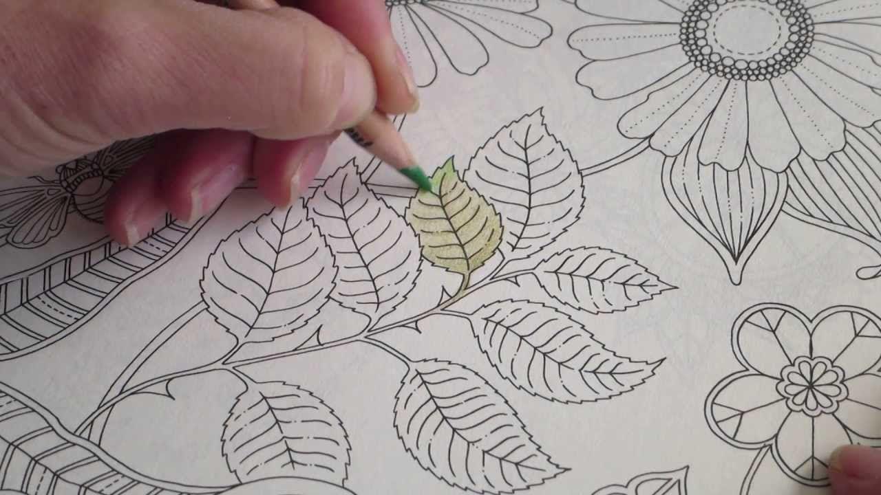 Secret Garden colouring book, How I colour a leaf (how to ...