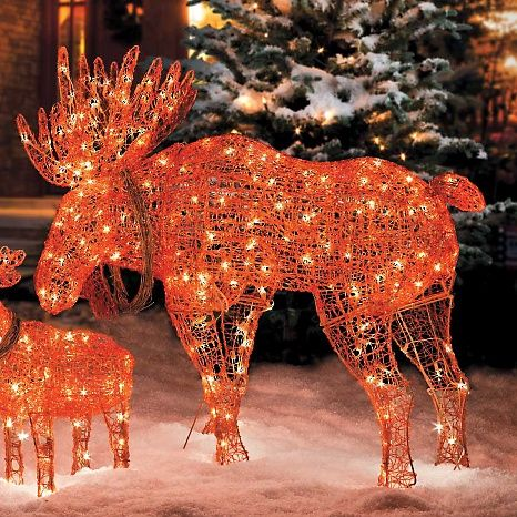 Lighted Moose Christmas Decoration