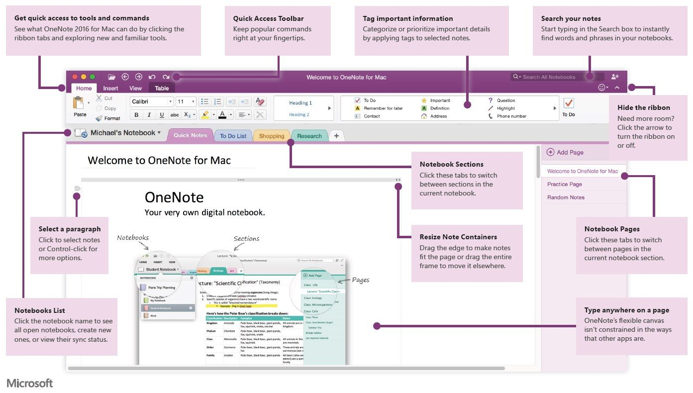 Onenote 2016 for mac quick start guide microsoft onenote onenote 2016 for mac quick start guide baditri Choice Image