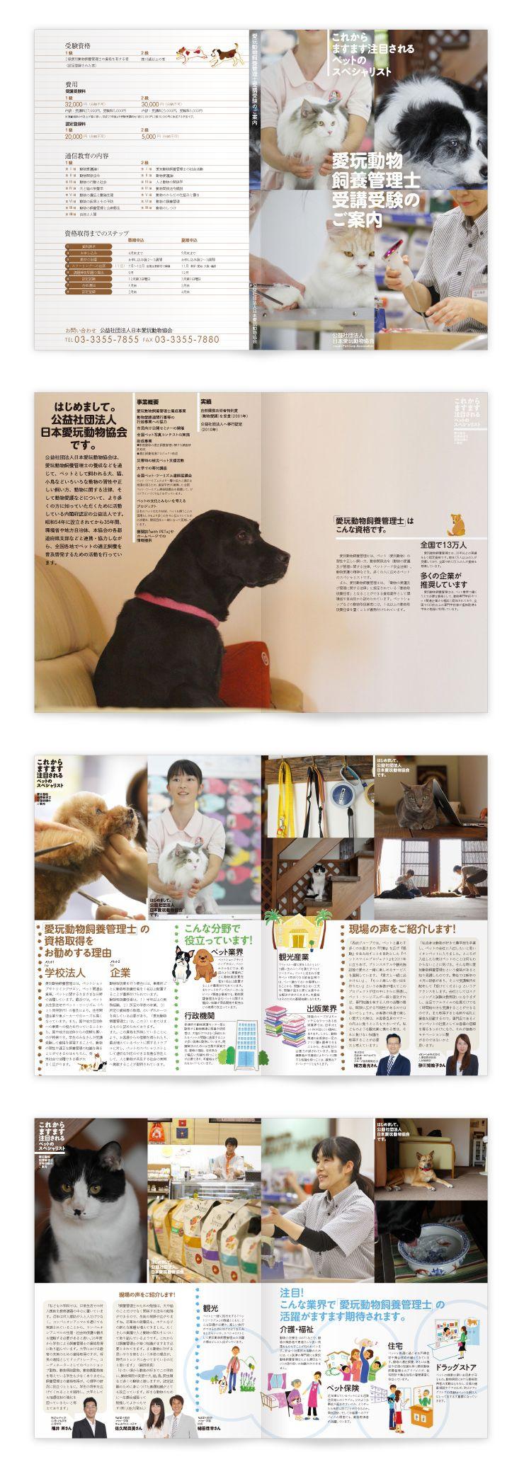 パンフレット/pamphlet   / Editorial Design