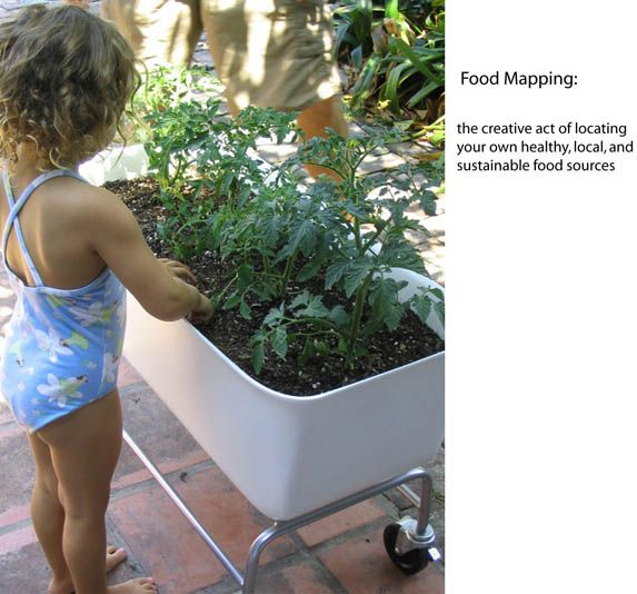 Urban Vegetable Gardening For Beginners: Grow Your Own Food (With Images)