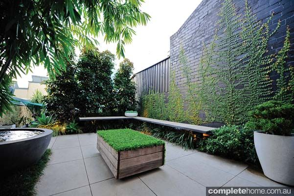 This small but hardy inner city courtyard garden design manages to