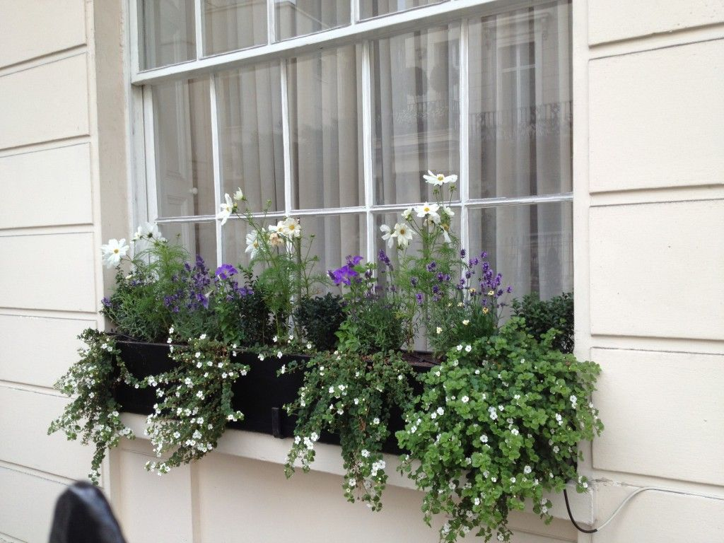 Artificial Lavender Window Box Google Search Window