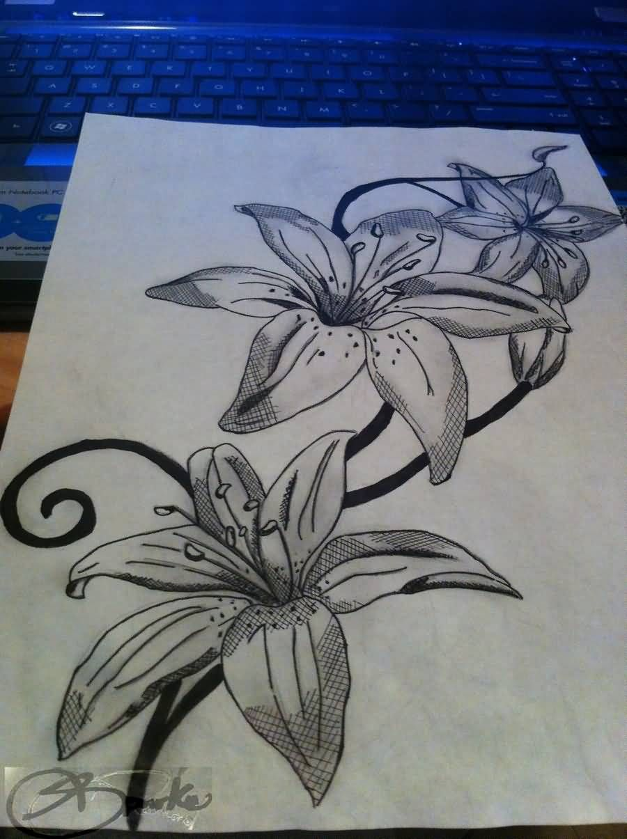Amazing tattoo designs on paper best lily flower tattoo design on amazing tattoo designs on paper best lily flower tattoo design on izmirmasajfo Choice Image