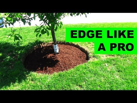 You Will Never Throw Away Grass Clippings After Watching This Youtube Landscaping Around Trees Landscaping Around House Mulch Around Trees