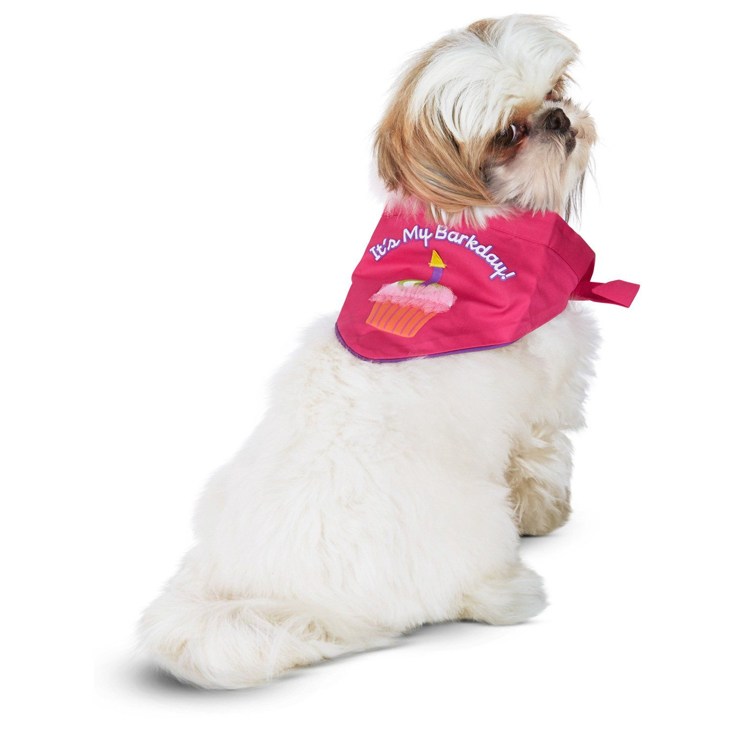 Petco Special Occasions Dog Birthday Girl Bandana Large X