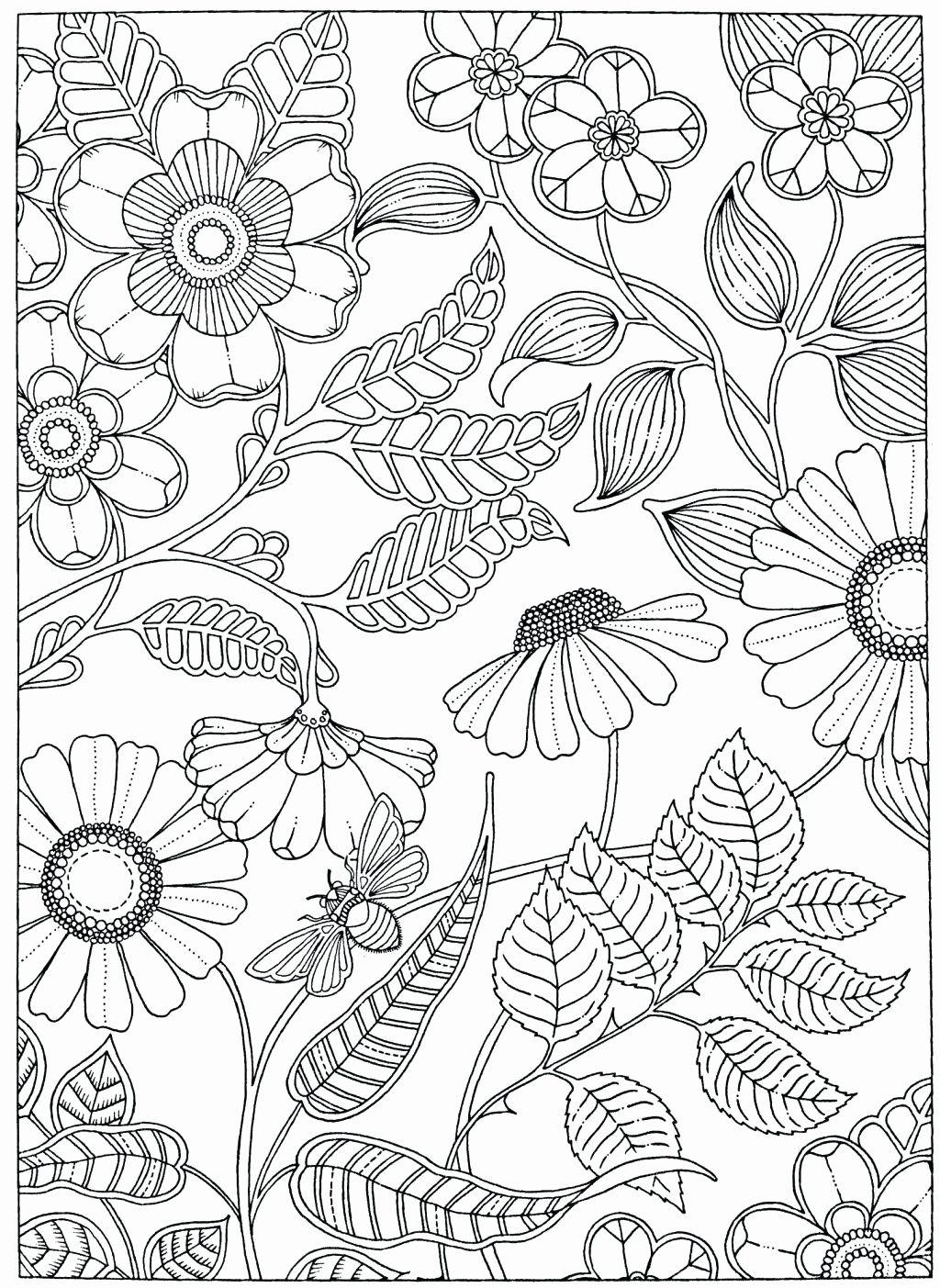 Vegetable Garden Coloring Sheet Fresh Free Printable Garden Coloring Pages Allenfines Garden Coloring Pages Flower Coloring Pages Secret Garden Coloring Book