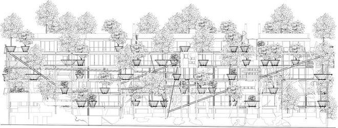 150 cây xanh vây quanh chung cư 5 tầng như ốc đảo - VnExpress Đời sống