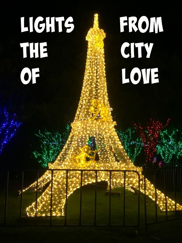 Christmas Lights Spectacular + Giveaway