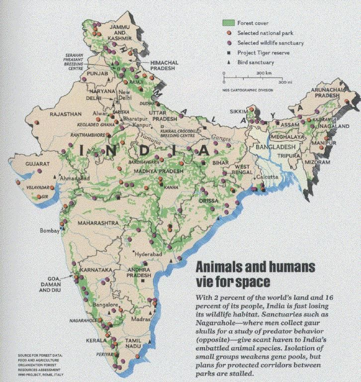 Land with rich diversity of Flora & Fauna World map, Map