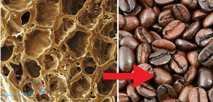 صورة حبوب القهوة المحمصة تحت المجهر