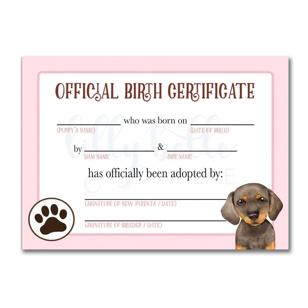 Pink Dachshund Birth Certificate In 2020 Pet Adoption Certificate Adoption Certificate Dog Birth