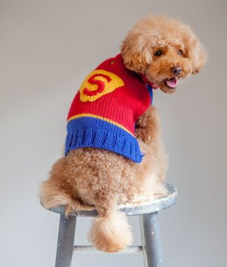 Super Dog Sweater Animals Dog Costumes Costumes Dogs