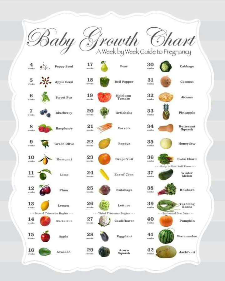 Pregnancy Growth Chart Baby Pinterest Growth Charts Pregnancy