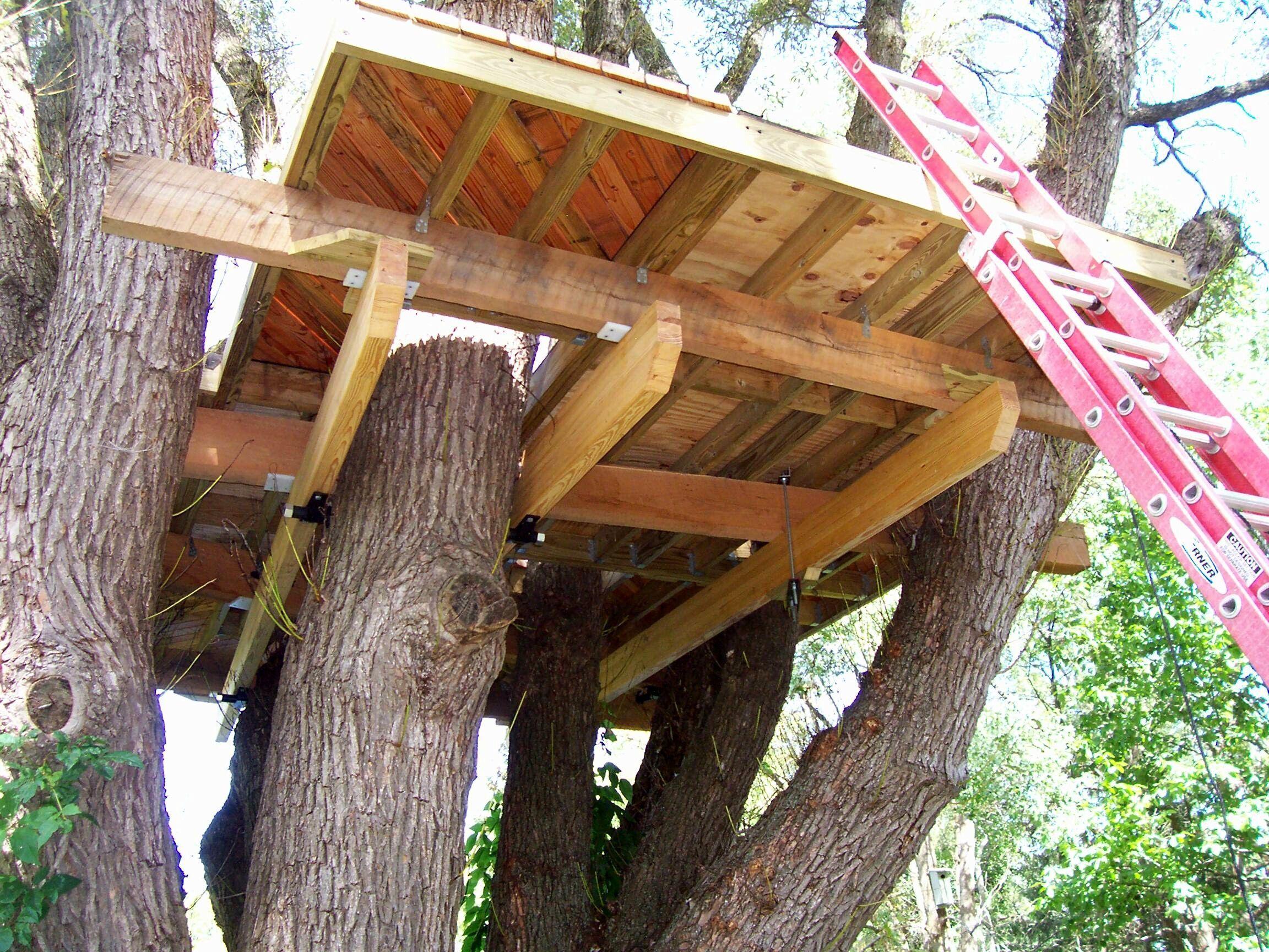 Tree House Mark Greatrix In 2020 Tree House Playground Flooring Backyard Playground