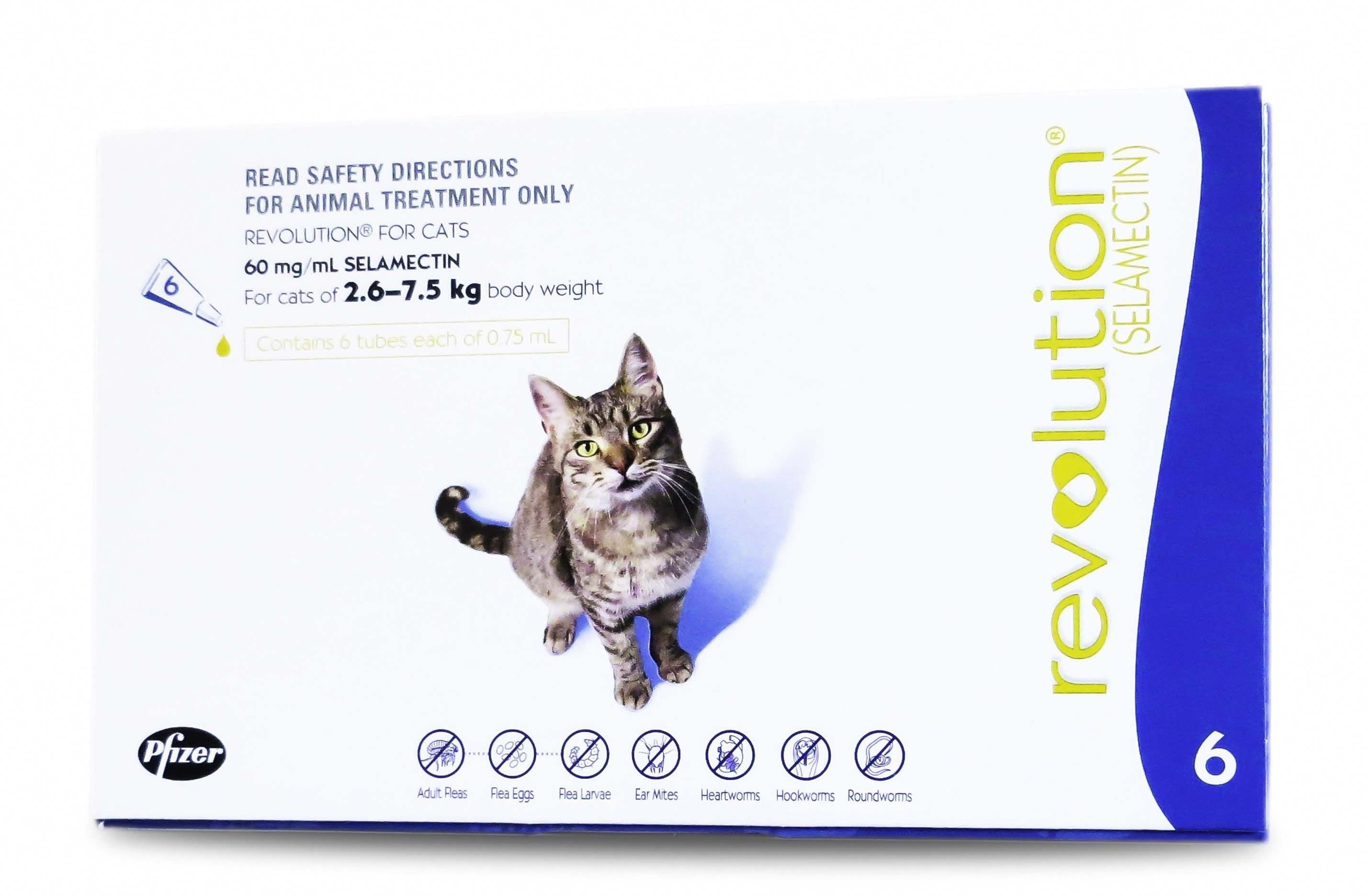 Cancatseatbread Id 1969623856 Cat Medication