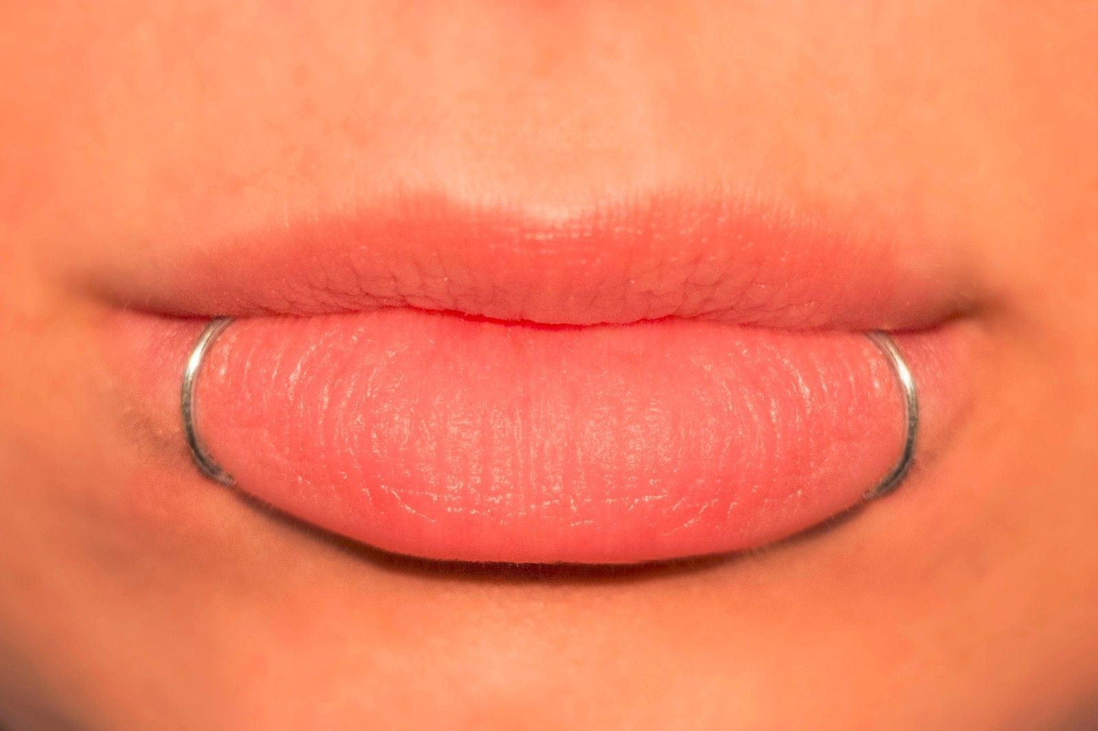 Fake Lip Ring, Snake Bites Kit, 2 Lip Rings, Gold, Silver