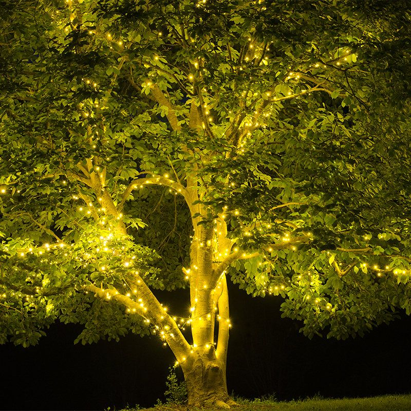 Tree Lights For Spring And Summer Yard Envy Outdoor Tree Lighting Solar Tree Lights Summer Trees