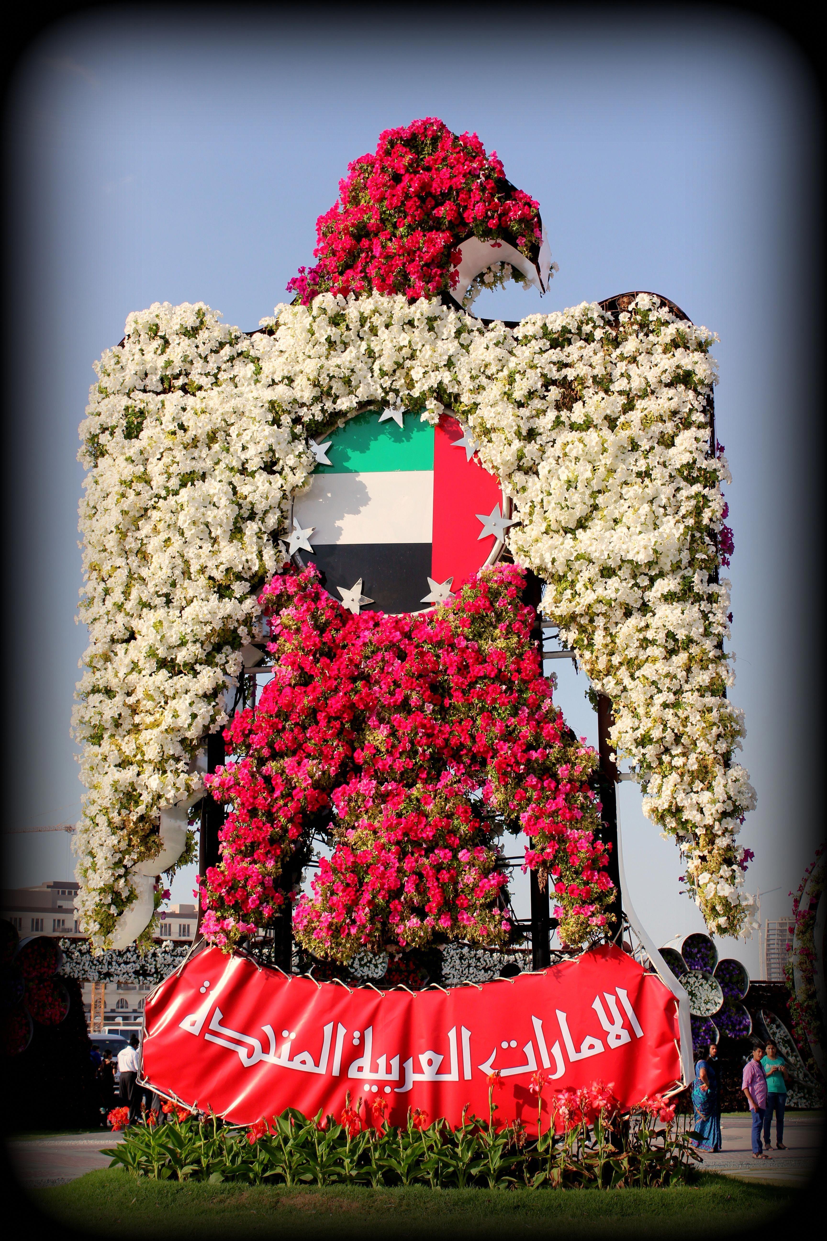 Dubai Miracle Garden dubaigarden Miracle garden, Dubai