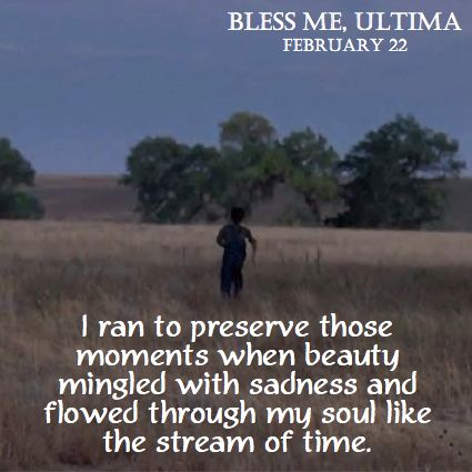 a quote from the film bless me ultima in theatres  bless me ultima essay a quote from the film bless me ultima in theatres 22