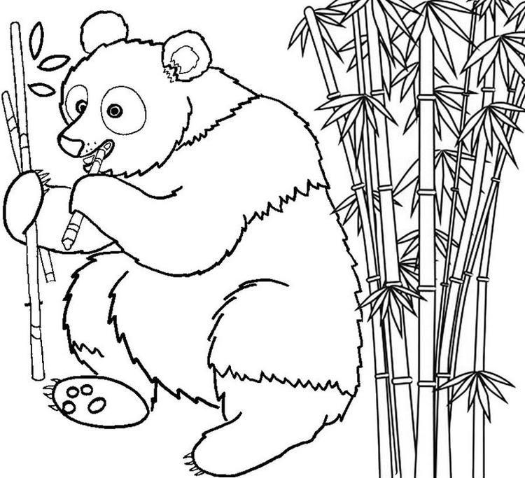 Panda Eating Bamboo Coloring Page Coloring Pages Heart Coloring Pages Animal Coloring Pages