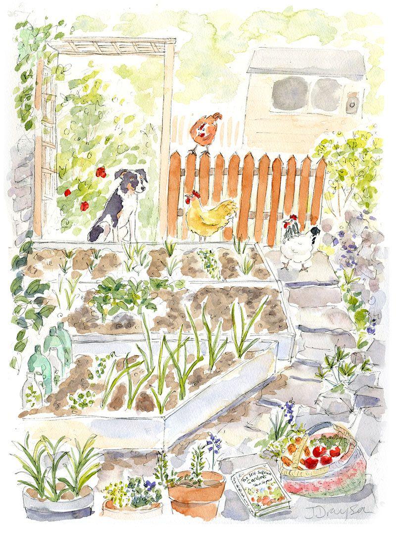 Janine Drayson | Garden Gossip