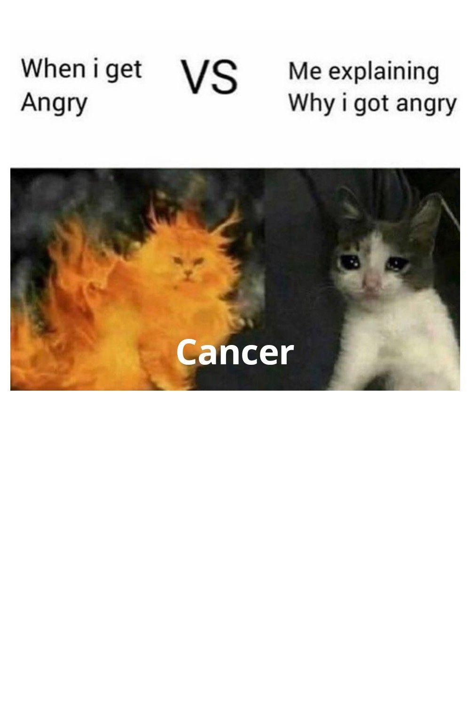 Zodiac Memes Cancer Zodiac Zodiac Signs Cancer Cancer Zodiac Facts