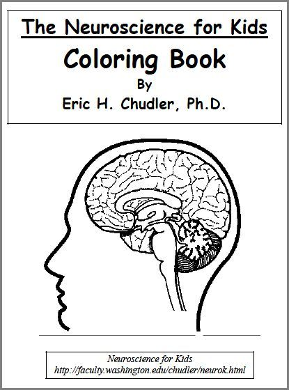 Coloring books · printable science worksheets lab sheets color pages for all grades