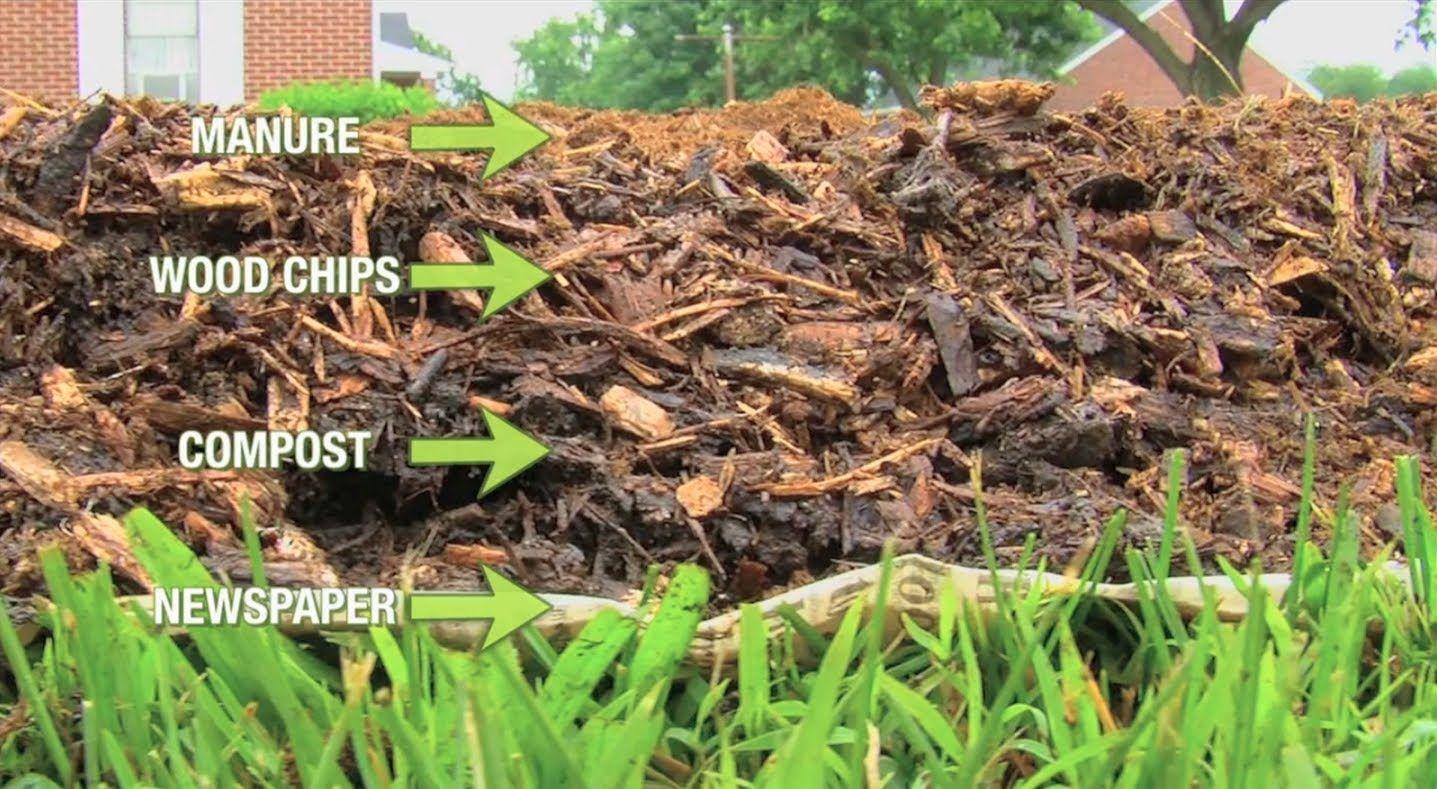 How to Grow a Back to Eden Organic Garden | Call of the Outdoors ...